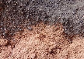 Cocopeat & Compost