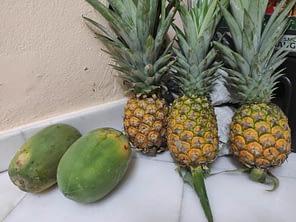 Fruit Industry